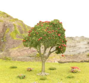 Apple Tree With Red Fruit 2