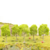 Deciduous Type Tree Light Green 1