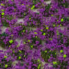 Heather 4mm Static Grass Tufts 3
